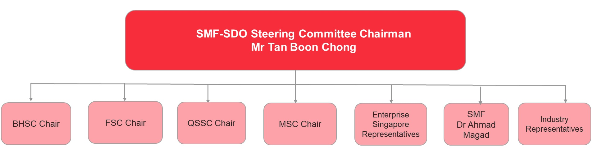 Steering_Committee_Structure